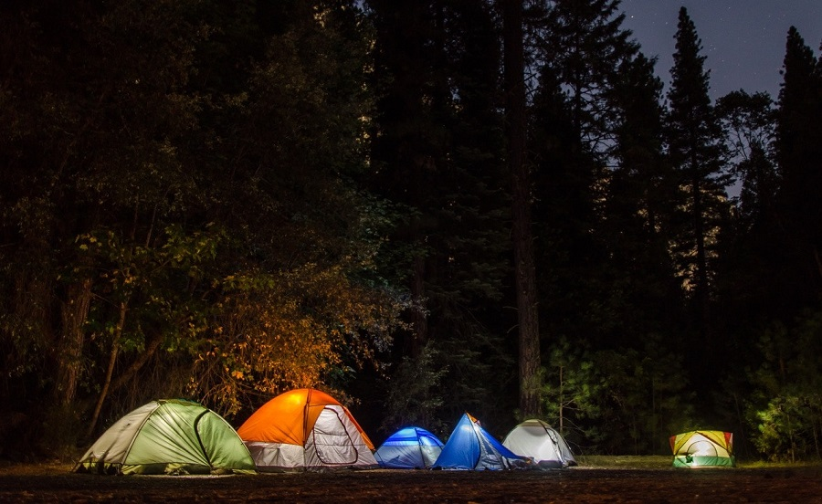 tents in the woods
